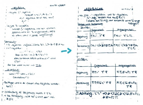structured notes and scripts useful