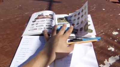 Sprachen lernen - Vokabeln lernen - Englisch Spanisch Französisch Schule Hausaufgaben Sprachkurs Sprachschule - Videokurs von Dr Martin Krengel - Modul 4