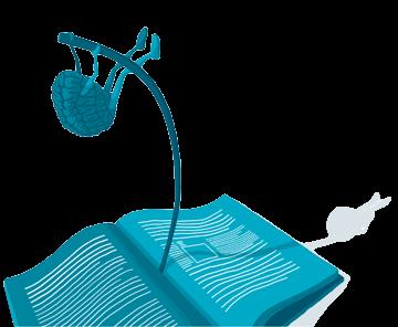 speed-reading-seminar-video-kurs-schneller-lesen-mehr-verstehen-studium-recherchen-länger-konzentriert-schneller-lesen-dr-martin-krengel-buch