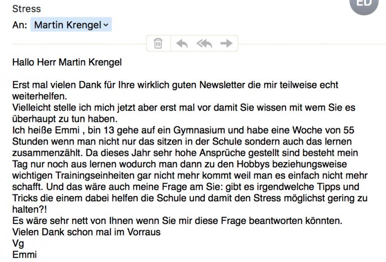 Stress-in-der-Schule-zu-viele-Hausaufgaben-Leistungsdruck-Gymnasium-Grundschule-Sekundarstufe-Was-tun_-dr-martin-krengel -2