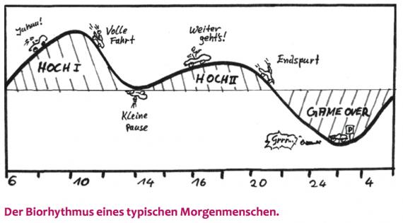 zeitmanagement-tipps-kreative-chaoten-freiberufler-selbststaendige-biorythmus-dr. martin krengel