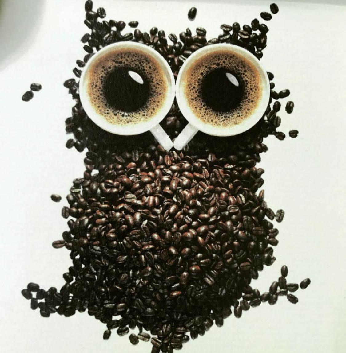 besser-schlafen-schnell-einschlafen-aber bitte ohne koffein und kaffee-durchschlafen-tipps-fuer-besseren-schlaf-von-dr-martin-krengel(1)
