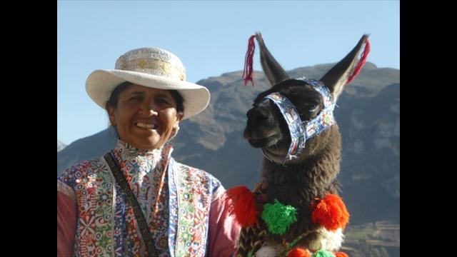 Leute und Lamas in Peru